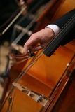 夸大大提琴接近的人 免版税库存图片