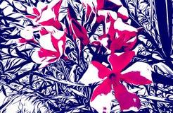 夹竹桃花-桃红色 向量例证