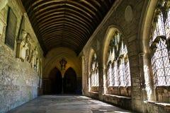 奇切斯特大教堂,三位一体的大教堂教会,英国 免版税库存图片