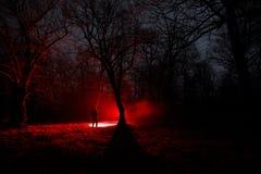 奇怪的光在一个黑暗的森林里在晚上 站立在有光的黑暗的森林里的人剪影 黑暗的夜在雾的森林里 免版税库存照片