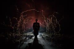 奇怪的剪影在一个黑暗的鬼的森林里在晚上,神秘的与蠕动的人的风景超现实的光 定调子 库存照片