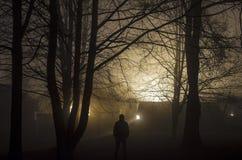 奇怪的剪影在一个黑暗的鬼的森林里在晚上,神秘的与蠕动的人的风景超现实的光 图库摄影