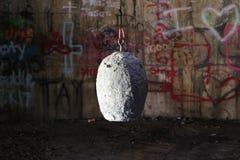 奇怪的工业鸡蛋 图库摄影