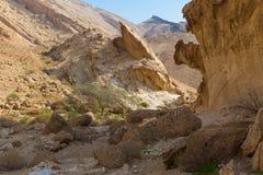 奇怪的形状的沙漠墙壁 免版税图库摄影