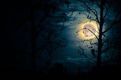 奇怪的月亮 免版税库存图片