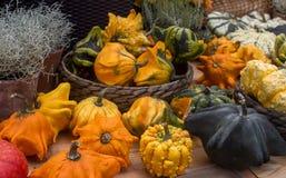 奇怪的装饰Haloween南瓜Variaty在季节性农夫` s市场上的 库存图片