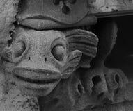 奇怪的面貌古怪的人生物观看的第3部分 库存照片