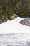 奇普瓦Falls 免版税图库摄影