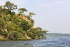 默奇森瀑布国家公园的,乌干达尼罗河 库存图片
