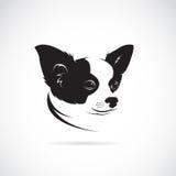 奇瓦瓦狗狗的传染媒介图象 图库摄影