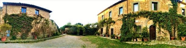 奇维塔二巴尼奥雷焦,维泰博,意大利省的Etruscan镇  庭院和常春藤 库存图片