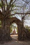 奇迹对时间消逝的`门户在Wat Phra NgamWat查家Ram, Phra Nakorn Si阿尤特拉利夫雷斯,泰国废墟的`  免版税库存图片