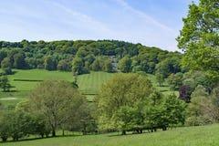 奇迹般地被割的倾斜的草甸,在Stannage边缘附近,在Haversage 库存照片
