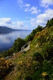 奈斯湖苏格兰 免版税库存照片