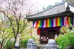 奈良寺庙在春天 免版税库存图片