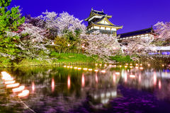 奈良日本城堡 库存图片