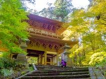 奈良,日本- 2017年7月26日:为一个大厦照相的未认出的人民在一个公园与,秋天风景,黄色 免版税库存照片