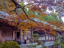 奈良,日本- 2017年7月26日:关闭一个大厦在公园与,秋天风景,黄色,橙色秋天树和 库存照片