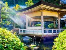 奈良,日本- 2017年7月26日:坐在一个大厦里面的未认出的人民在庭院里,享用池塘在Todai 免版税库存图片