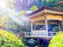奈良,日本- 2017年7月26日:坐在一个大厦里面的未认出的人民在庭院里,享用池塘在Todai 免版税库存照片