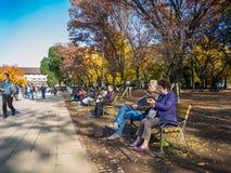 奈良,日本- 2017年7月26日:坐在公园和拍照片的未认出的人民,享受看法  免版税库存照片