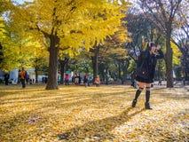 奈良,日本- 2017年7月26日:拍照片和享受美好的秋天风景的看法的未认出的人民 库存照片