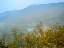 奈良,日本- 2017年7月26日:美好的秋天风景、黄色秋天树和叶子,五颜六色的叶子在秋天 免版税库存图片