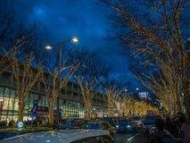 奈良,日本- 2017年7月26日:路的美丽的景色,有与圣诞节lighs的有些树的在市东京 库存照片