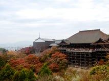 奈良,日本11月23日:很多人参观清水寺Te 免版税图库摄影