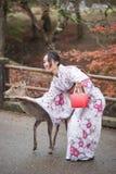 奈良,日本- 11月26 :游人和野生鹿在11月的奈良 库存照片