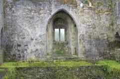 奉承城堡爱尔兰 免版税库存图片