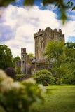 奉承城堡爱尔兰 免版税图库摄影