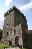 奉承城堡黄柏县爱尔兰 免版税库存图片