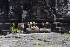 奉献物看法在雕刻的在Preah Neak Pean寺庙前面 图库摄影