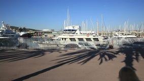 奎伊在港口,游艇 股票视频