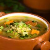 奎奴亚藜和蔬菜汤 库存照片