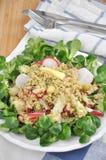 奎奴亚藜沙拉用红色萝卜和芦笋 免版税图库摄影