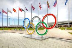 索契 在奥林匹克区域的奥林匹克圆环 免版税库存图片