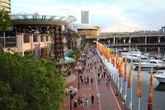 奔忙亲爱的港口,悉尼 库存照片
