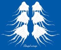 套三个不同翼 元素的汇集 用羽毛装饰  图库摄影