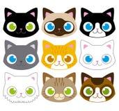 套不同的可爱的动画片猫面孔 库存图片