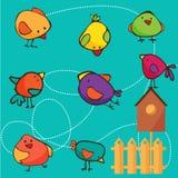 套不同的逗人喜爱的鸟 免版税库存图片