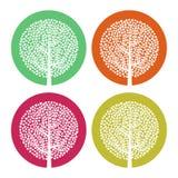 套与叶子的四棵白色树在五颜六色的圆的背景 图库摄影