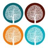 套与叶子的四棵白色树在五颜六色的圆的背景 库存图片