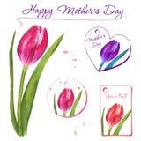 套与手拉的郁金香的小明信片 花卉设计要素 免版税库存图片
