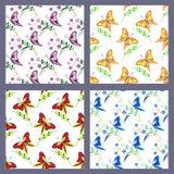 套与昆虫,与蝴蝶的五颜六色的背景的无缝的传染媒介样式 免版税库存图片