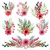 套与明亮的红色花的水彩小的花束 库存图片