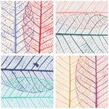 套与最基本的叶子的样式 自然本底 也corel凹道例证向量 向量例证