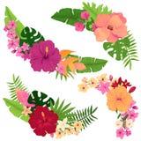 套与桃红色,红色和黄色木槿的花束 库存图片