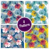 套与热带植物和木槿的夏天五颜六色的夏威夷无缝的样式开花 免版税库存图片